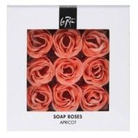 Seifenrosen apricot / Rose